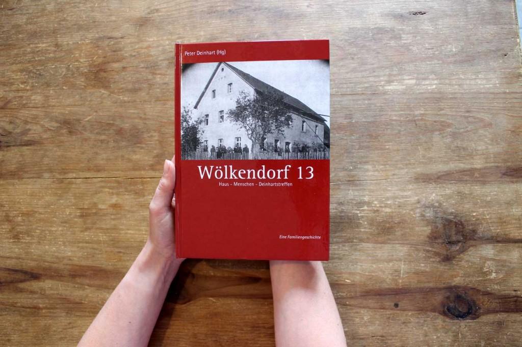 deinhart-woedo13-titel-1
